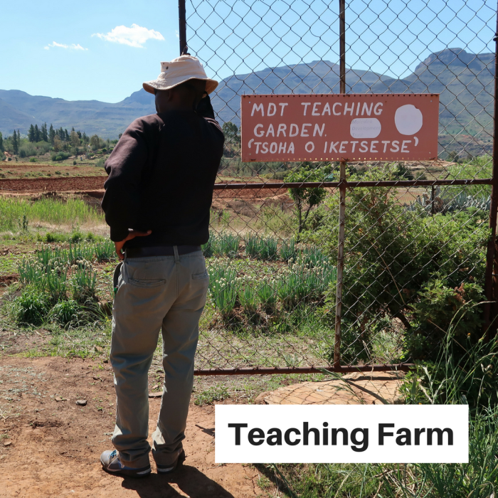 Teaching Farm